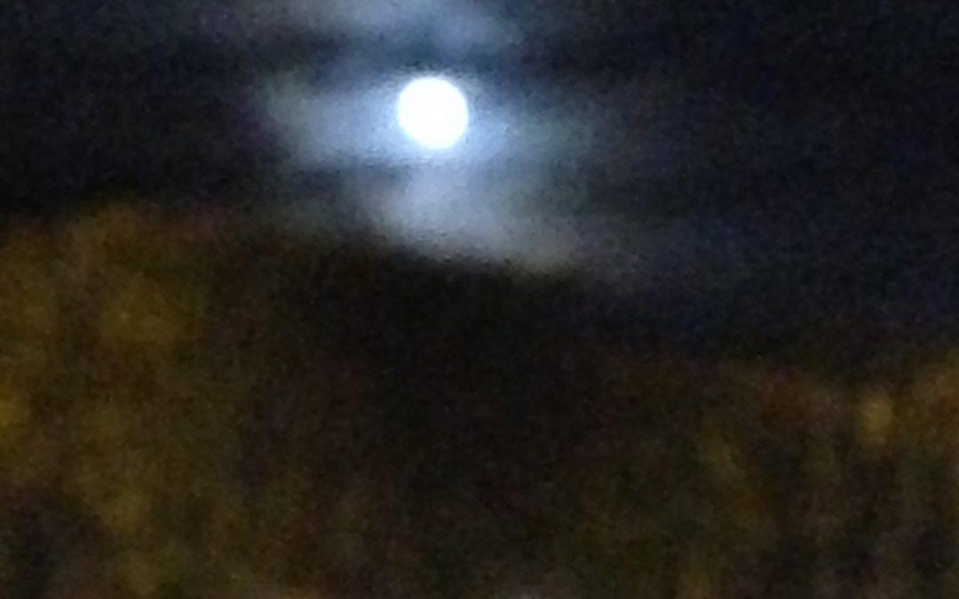 Clair de Lune à Lille
